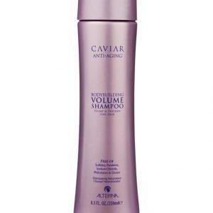 Alterna Caviar Seasilk Volume Shampoo 250 ml