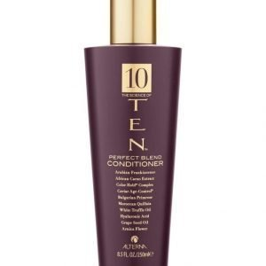 Alterna Ten Perfecting Conditioner Hoitoaine 250 ml