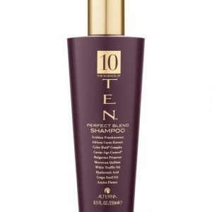 Alterna Ten Perfecting Shampoo 250 ml