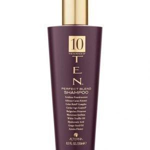 Alterna Ten Perfecting Shampoo 250 ml