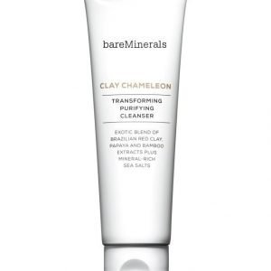 Bare Minerals Clay Chameleon Transforming Purifying Cleanser Puhdistusvaahto 120 ml