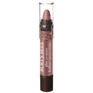 Burt's Bees 100% Natural Gloss Lip Crayon 2.83g Various Shades Oatback Oasis