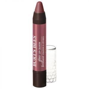 Burt's Bees 100% Natural Gloss Lip Crayon 2.83g Various Shades Tahitian Sunset