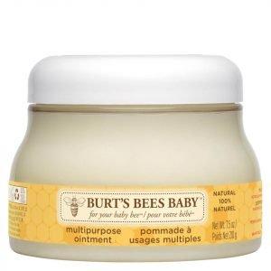 Burt's Bees Baby Multipurpose Ointment 210 G