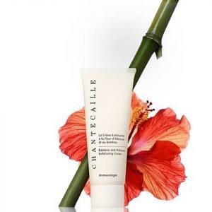Chantecaille Hibiscus And Bamboo Exfoliating Cream 75 Ml