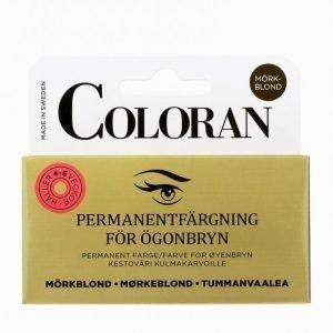 Coloran Eyebrow Color 4-6 Weeks Kulmaväri Cendré