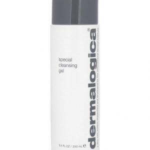 Dermalogica Special Cleansing Gel Puhdistusgeeli 250 ml