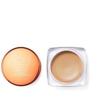 Ex1 Cosmetics Delete Concealer 6.5g Various Shades 6.0