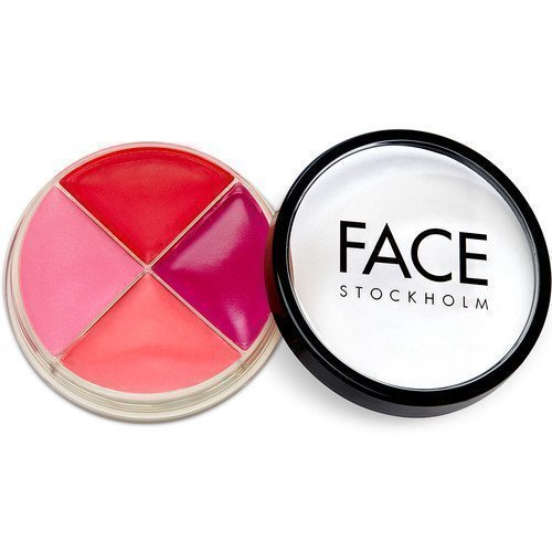 FACE Stockholm Smart Face Bright Color Wheel
