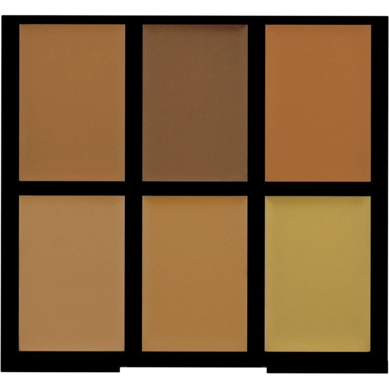 Freedom Makeup London Pro Conceal & Correct Medium/Dark 6 Cream Concealing shades