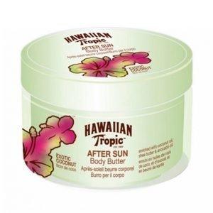 Hawaiian Tropic Coconut Body Butter Aurinkovoide