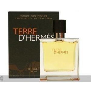 Hermes Hermes Terre D'Hermes Edt 100ml