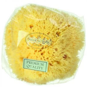 Hydrea London Honeycomb Sea Sponge