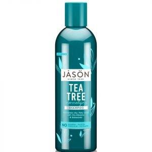 Jason Normalizing Tea Tree Treatment Shampoo 517 Ml