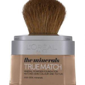 L'Oréal Paris True Match Mineral Mineraalimeikkivoide 10 g