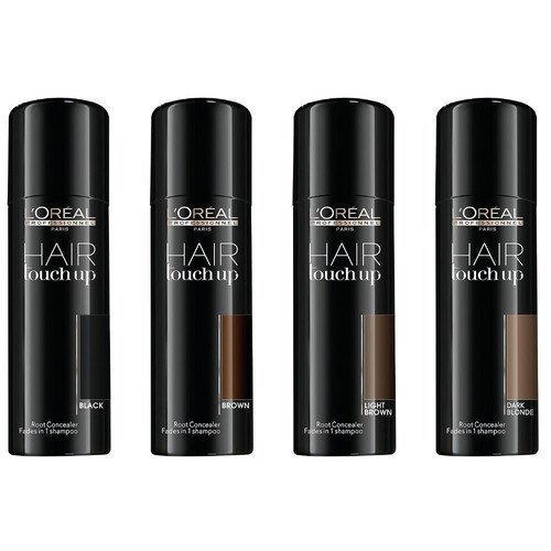 L'Oréal Professionnal Hair Touch Up Black