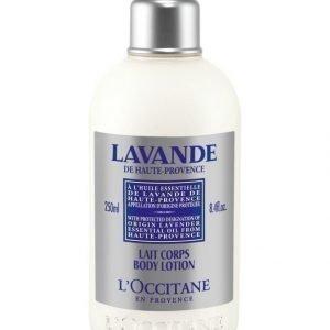 Loccitane Lavender Body Lotion Vartalovoide 250 ml