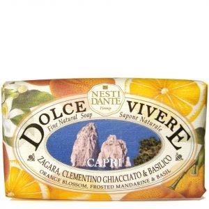 Nesti Dante Dolce Vivere Capri Soap 250 G