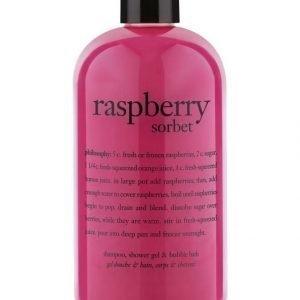 Philosophy Bath Raspberry Sorbet 3 In 1 Shower Gel Suihkutuote 480 ml