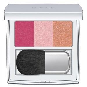 Rmk Color Performance Cheek Blusher 02