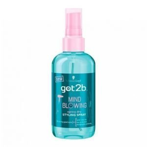 Schwarzkopf G2b Mind Blowing Dry Spray