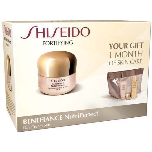 Shiseido Benefiance Fortifying Gift Bag