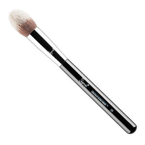 Sigma Concealer Blend Kabuki F79