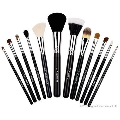 Sigma Essential Kit Professional Brush Collection