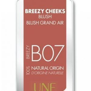 Une Breezy Cheeks Blush 3