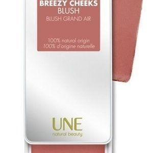 Une Breezy Cheeks Blush B06