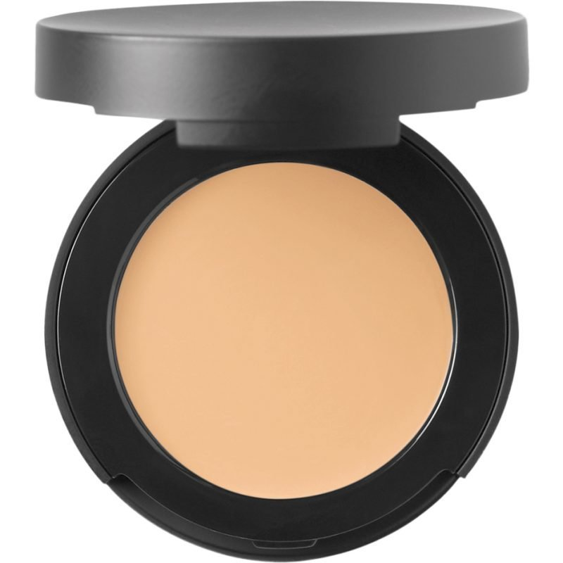bareMinerals Correcting Concealer SPF20 Light 2 2g